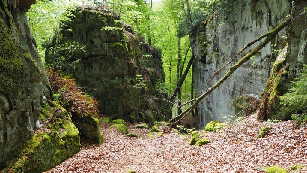 Luxemburg Müllerthal wandern