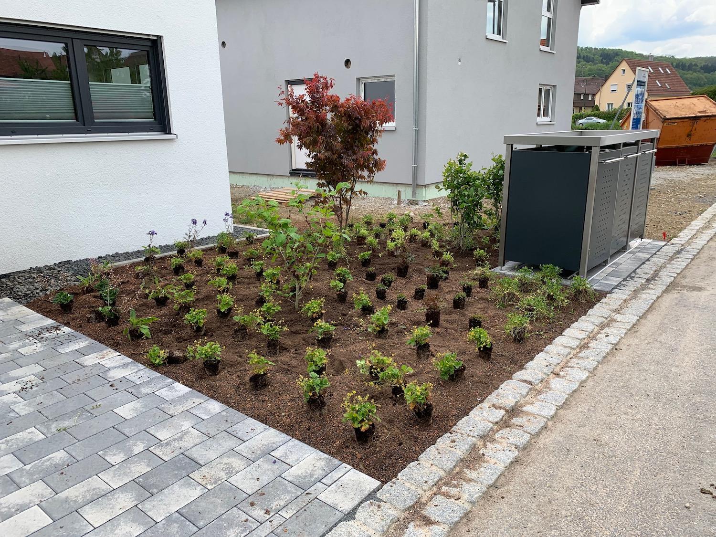 Auffahrt und Vorgarten